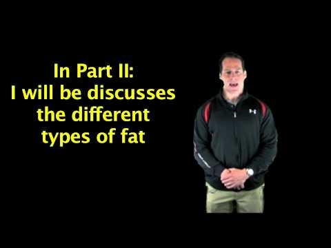 Fat Part 1