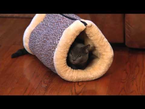 KITTY SHACK - Matelas pour chat - Best Of TV