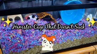 Setting Up a Hamster Cage That Doesn't Suck! *shocking* by Tyler Rugge