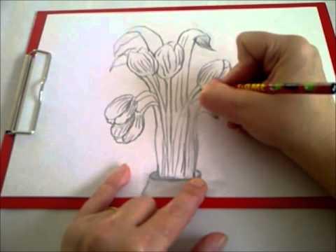 Zeichnen lernen für Anfänger. Einen Frühlings-Blumenstrauß zeichnen mit Bleistift. Tulpen.