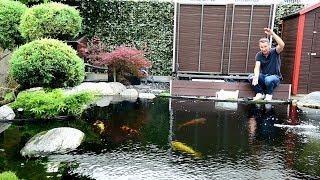 Optisch ist alles 100%. Kann das Wasser aber auch einer Analyse standhalten?Für Fragen oder Feedback: info@modern-koi.deKonishi Koifutter sowie wöchentliche Koiauktionen finden Sie unter: http://www.konishi-koi.com