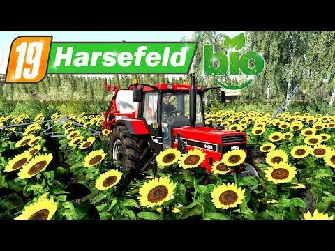 LS19 Harsefeld 2k19 BIO #28 - Auf den Striegel umsteigen | Farming Simulator 19