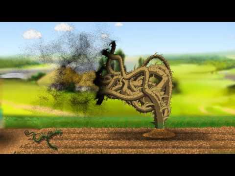 Захист від бур'янів - гербіцид Напалм від компанії