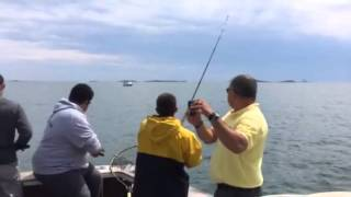 Winthrop (MA) United States  City pictures : Fishing with Captain Joy, winthrop massachusetts