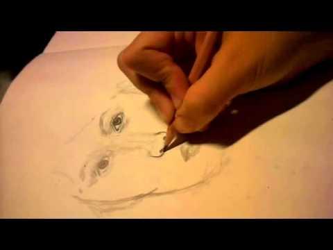 Portrait zeichnen -Übung-