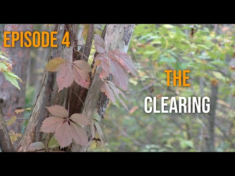 The Fall Season 1 Episode 4: The Clearing