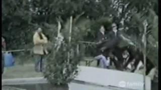 America's Funniest Home Videos - Nhung Clip hai hay nhat - tap 82