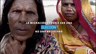 Día Mundial de la Alimentación 2017: La migración debería ser una elección,