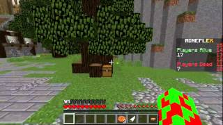 Hey Guys! CreeperMan3 here and today we are on Mineplex Survival Games playing the Leather and Wood Challenge! I reached the last 7!