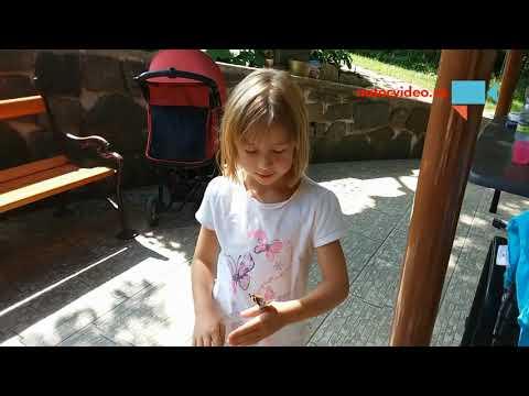 Terezka s motýlkem