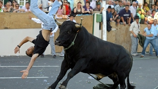 Nonton Dangerous Bull Fight Accidents Compilation 2017 Lucky and Funny People Fail Video Clips Film Subtitle Indonesia Streaming Movie Download