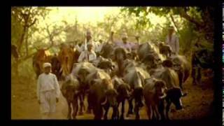 Gujarat Tourism Ad - Gir Forest - Hindi full download video download mp3 download music download