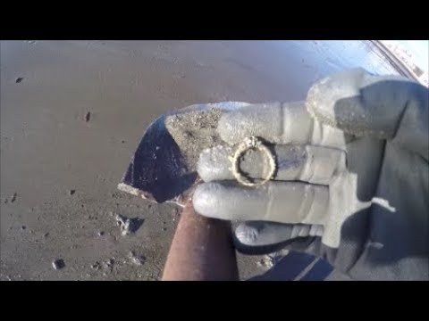 Beach Metal Detecting Equinox Finds Gold Ruby Diamond Ring