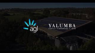 Yalumba solar PV system the largest at an Australian winery