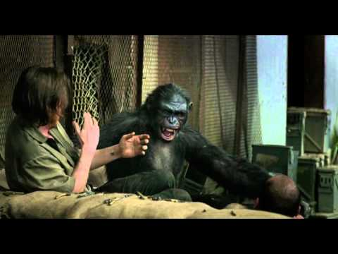 Sample-Dawn of the Planet of the Apes (2014) 720p BluRay Hindi DD 5.1Ch - Eng DD 5.1Ch ~ PyZ