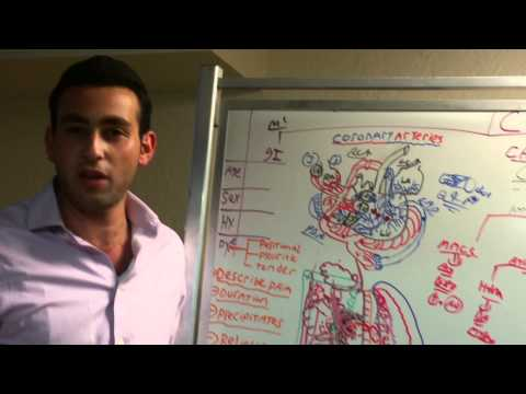 saul kassin usmle step 1 2 3 cardiology review section 3a cad