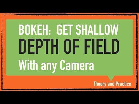 Can You Get Bokeh with Mirrorless Cameras?