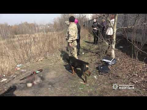 Убийство в Житомире - шокирующие подробности