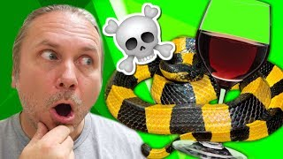 VENOMOUS CHINESE SNAKE WINE TURNS DEADLY! I REPTILES IN THE NEWS by AnimalBytesTV