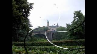 Estratto Grand Ducato Lussemburgo 21 Giugno 2011