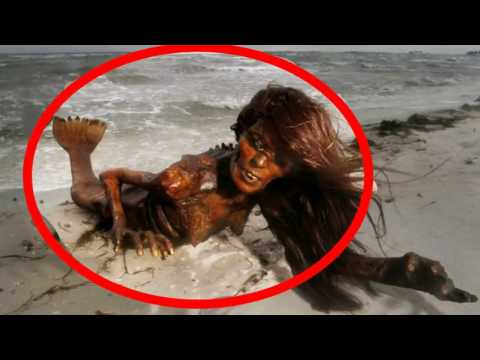 REAL Mermaid  Found In Beach Fish Girl ,fish Women [you Must Watch].