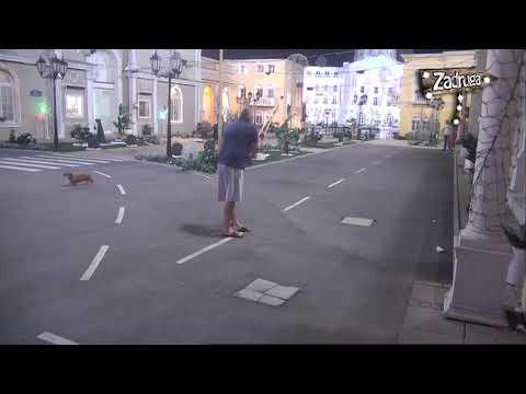 DISKVALIFIKOVAN: Miki UDARIO šamar Suzani, pa TUKAO Nadeždu štakom, a trenutno je na saslušanju u policiji