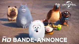 Comme Des Bêtes / Bande-annonce officielle 2 VF [Au cinéma le 27 juillet 2016] - YouTube