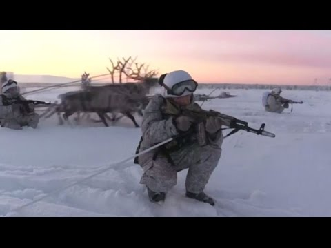 Reindeer and husky dogs train with Russian soldiers in the Murmansk region.