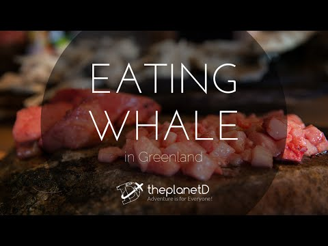 Eating Whale in Greenland | Food Travel Vlog