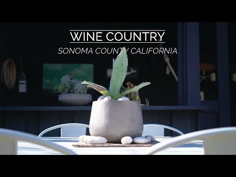 Experience Wine Country in California