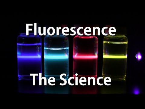 fluorescent - In this video we explore the colorful science of fluorescence. A really cool way to play with fluorescence at home is get a blue or violet laser pointer and ...