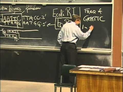 Grundlegende Mechanismen der Cloning, Auszug 1 | MIT 7.01SC Grundlagen der Biologie