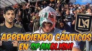 Escorpión suelto en estadio de fut de Los Ángeles FC, les di suerte y ganaron!