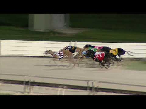 Albion-Park-Sunday-16022020-Race-7