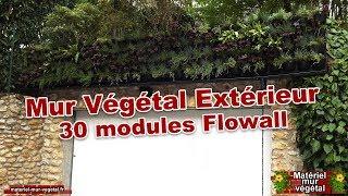 Mur Végétal extérieur avec 30 modules Flowall