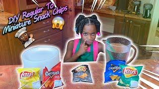 DIY Regular To Miniature Snack Chips!