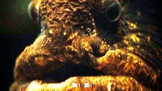 「シナスイ族」それは、しながわ水族館に潜んでいるヤバイ魚や生き物たち/しながわ水族館CM1