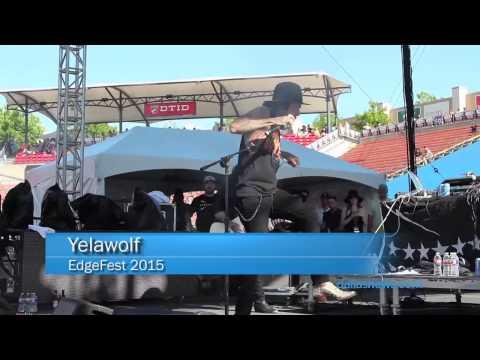 Edgefest 2015 (видео)