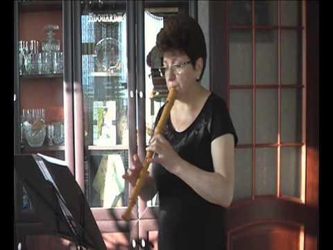 Hey Navavar - Armenian song (видео)