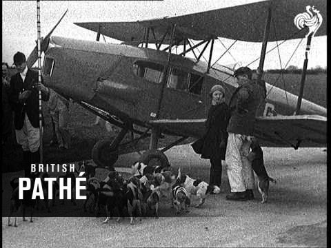 Beagle hunt at Sywell. Originally...