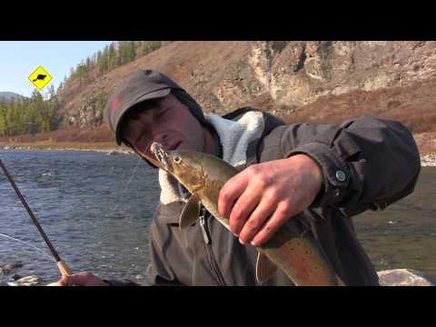 ловля на блесну в горных реках
