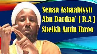 Abu Dardaa'i r.a ~ Sheikh Amin Ibroo