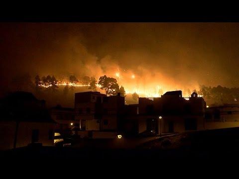Ισπανία: Ένας νεκρός και τεράστια οικολογική καταστροφή από τη μεγάλη πυρκαγιά στα Κανάρια Νησιά
