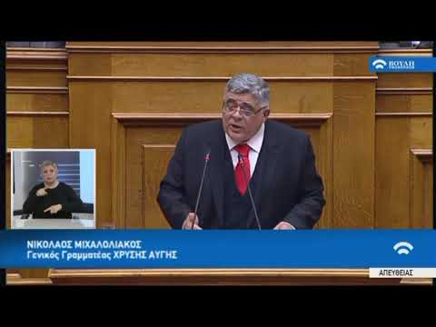 Ν.Μιχαλολιάκος(Γεν.Γραμ.Χρυ.Αυγής)(Συζήτηση για τη διενέργεια προκ/κής εξέτασης)(21/02/2018)