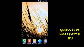 Grass Live Wallpaper HD YouTube video
