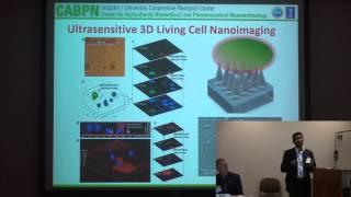 Illinois NanoBio Node - CABPN Workshop - CABPN Research Focus Overview