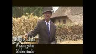 Heber Ethiopia Sep 18/2013