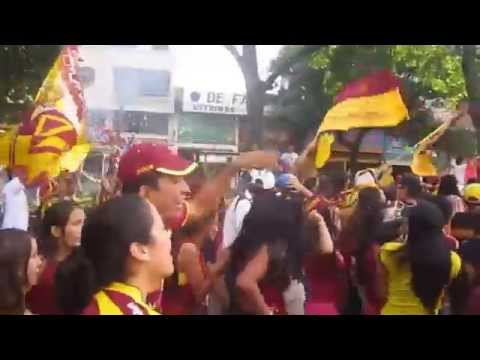 🎶Vamos campeon no falles a tu hinchada la que te sigue en la buena y en la mala🎶 HD - Revolución Vinotinto Sur - Tolima