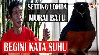 Video Bongkar Settingan Murai Jawara Bersama Babah Johan,SNIPER Debutan baru Langsung Moncer MP3, 3GP, MP4, WEBM, AVI, FLV Oktober 2018