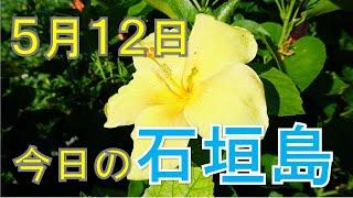 5月12日の石垣島天気